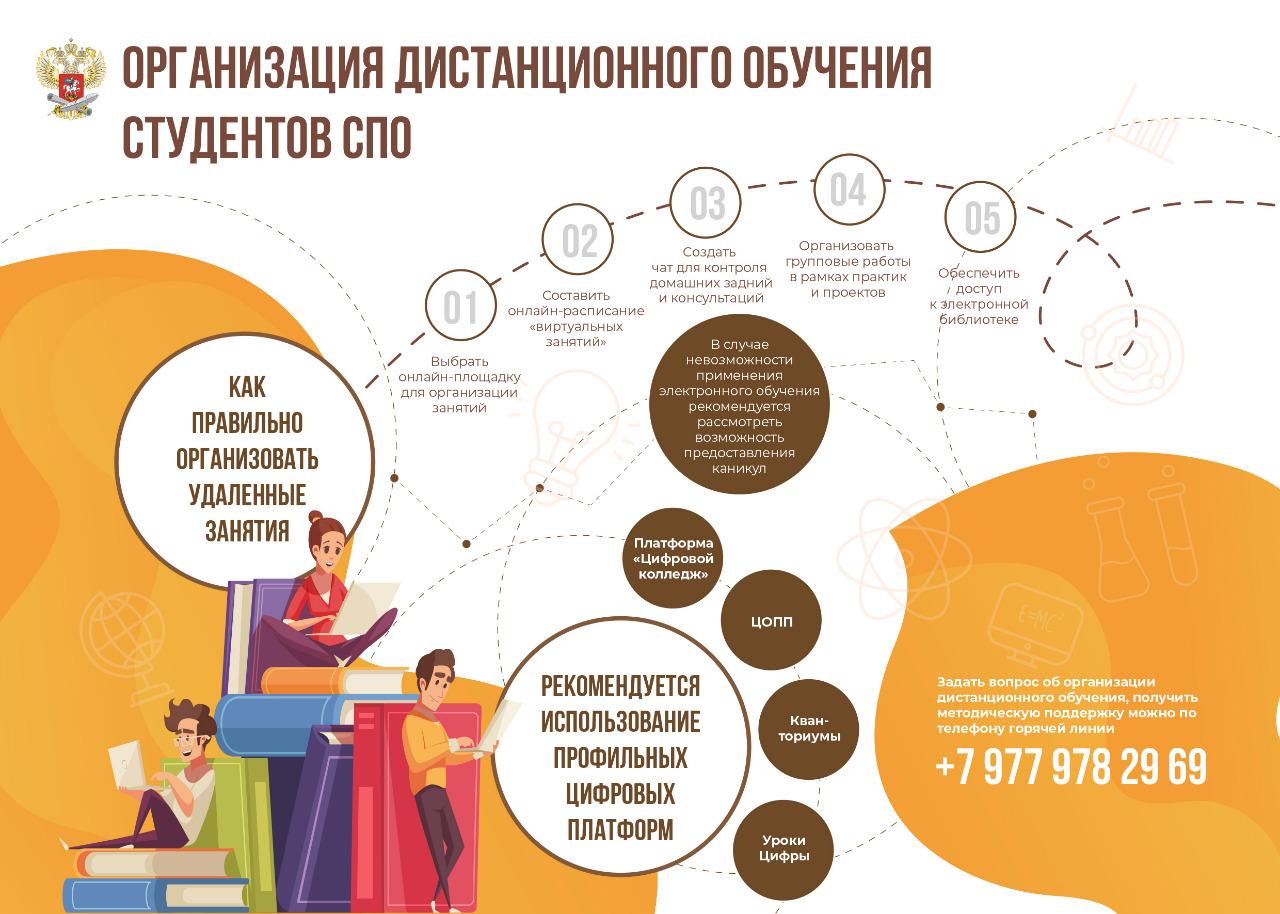 infograph8